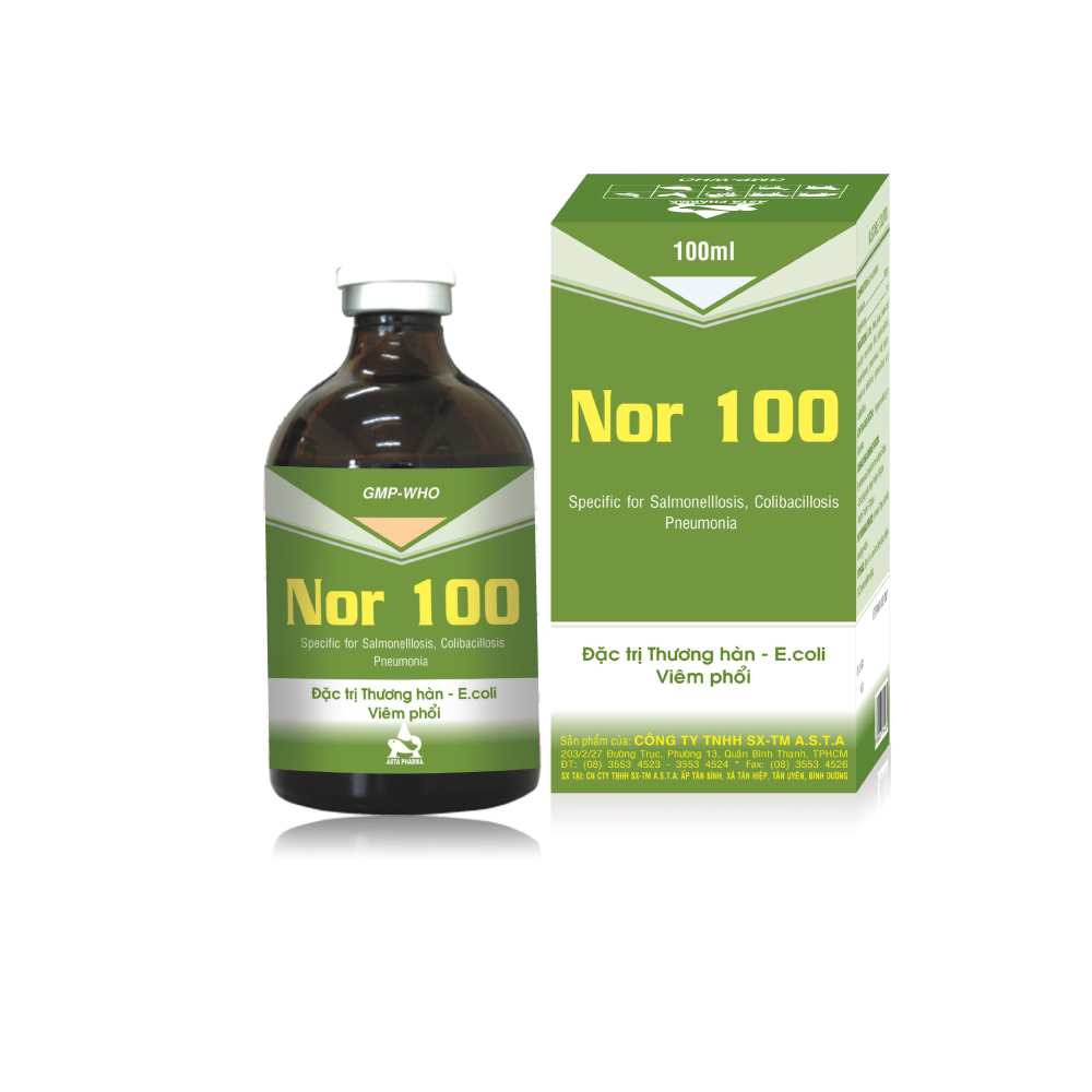 nor 100